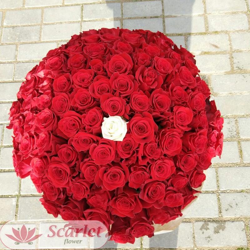 Букет 100 и 1 роза
