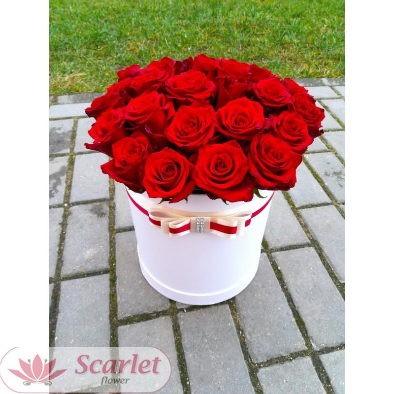 Роза Фридом 65 см. Поштучно.