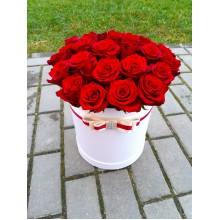 Цилиндр 35 красных роз