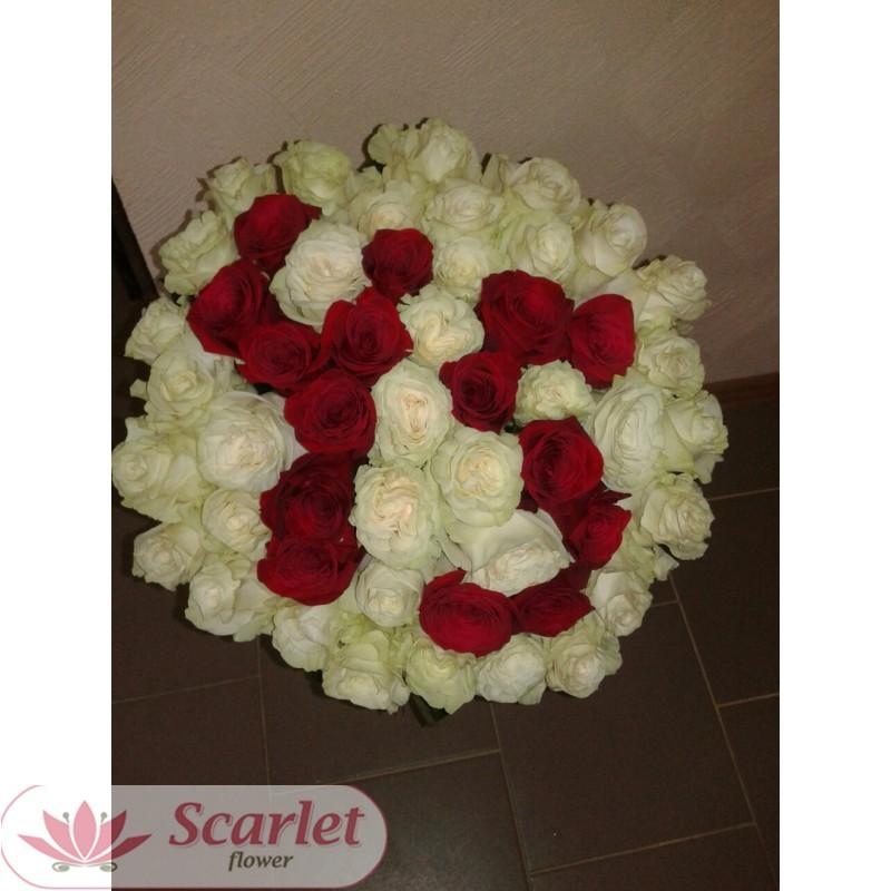 Букет 51 роза (45)