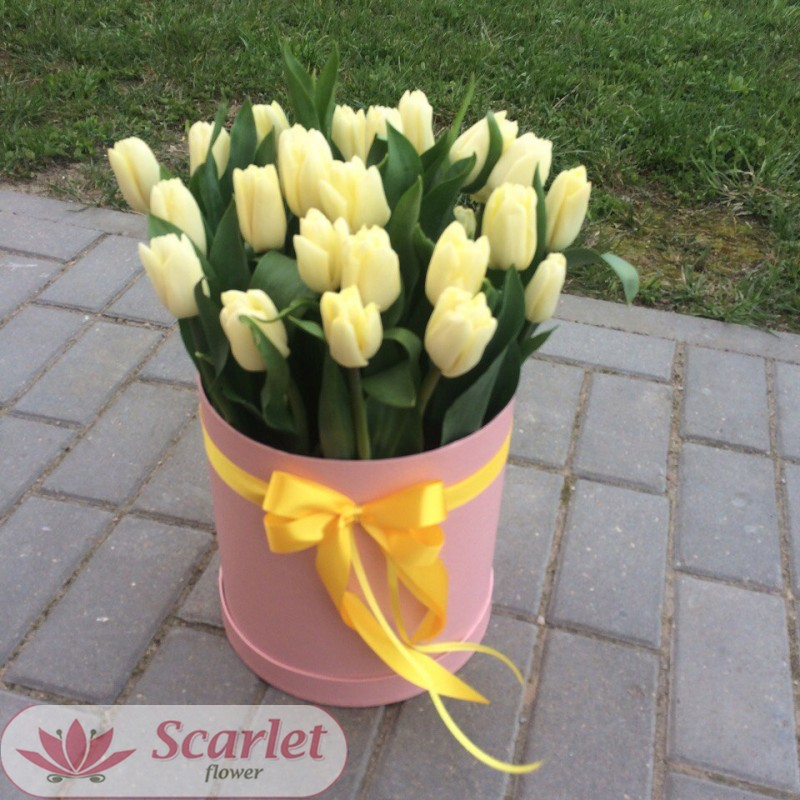 25 тюльпанов в цилиндре