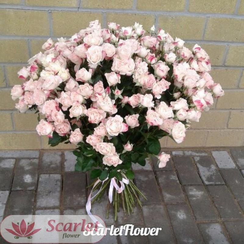 Букет 51 кустовая роза Рефлекс